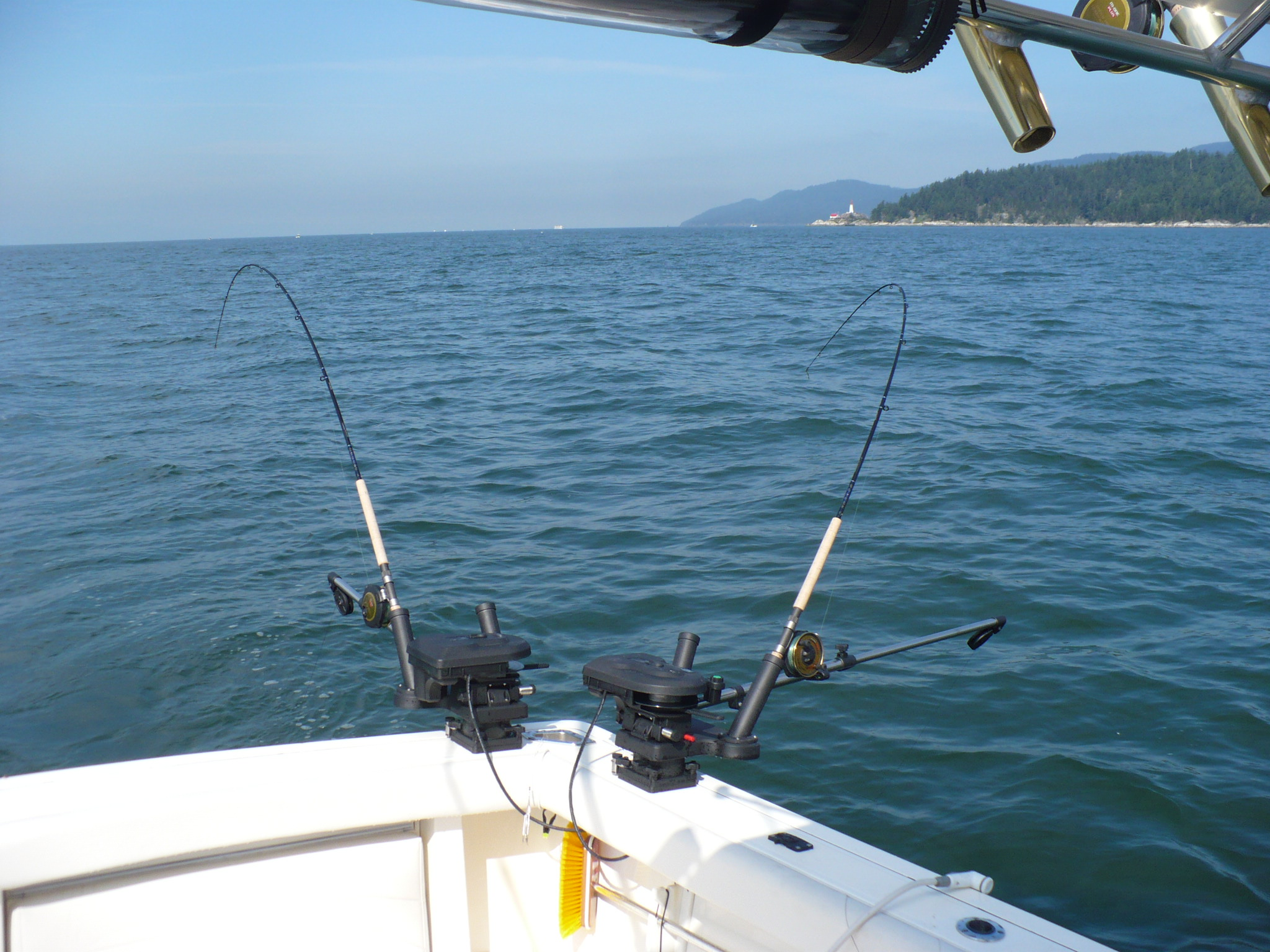 Salmon fishing english bay picture tag vancouver for Salmon fishing charters